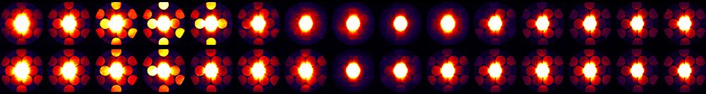 Electron Microscopy Datasets